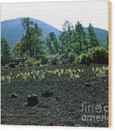 Sunset Crater Arizona Wood Print