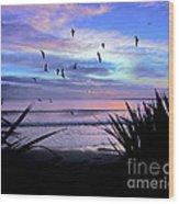 Sunset Down Under Wood Print