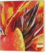 Sunset Floral Wood Print