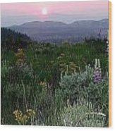 Sunset Flowers Wood Print