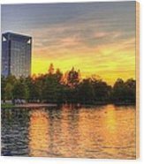 Sunset In Hermann Park Wood Print