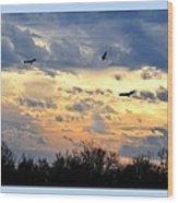 Sunset Of The Hawks Wood Print