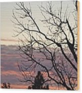 Sunset Of Winter's Beauty Wood Print by Naomi Berhane