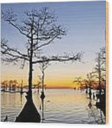Sunset On Lake Mattamuskeet Wood Print