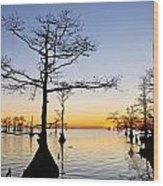 Sunset On Lake Mattamuskeet Wood Print