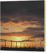 Sunset On The Vineyards Wood Print by Nancy Chambers
