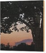 Sunset Over A Witness Tree Wood Print