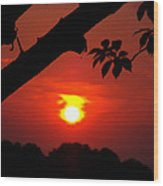Sunset Over The Golf Course Wood Print