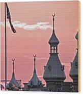 Sunset Over The University Of Tampa Wood Print