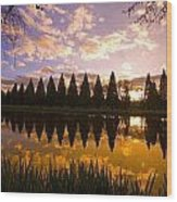 Sunset Reflection In A Park Pond Wood Print by Craig Tuttle