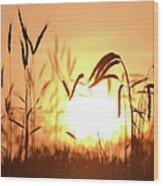 Sunset Rye IIi Wood Print