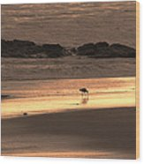 Sunset Shimmer Beach Wood Print