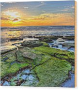 Sunset Siesta Key Rocks Wood Print by Jenny Ellen Photography