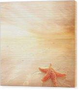 Sunset Star Fish Wood Print by Lee-Anne Rafferty-Evans
