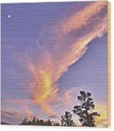 Sunset Swoosh Wood Print by Forest Alan Lee