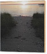 Sunset Through The Grass Cape Charles Virginia Wood Print