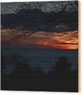 Sunset Tree Closeup Wood Print