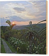 Sunsetting Over Costa Rica Wood Print