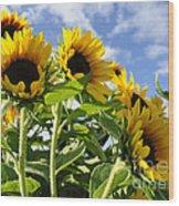 Sunshine Lolipops Wood Print