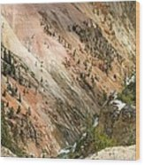 Sunshine On Grand Canyon In Yellowstone Wood Print