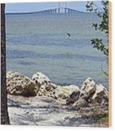Sunshine Skyway From The Causeway Wood Print
