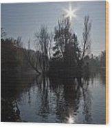 Sunshine Star Wood Print