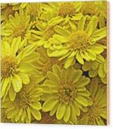 Sunshine Yellow Chrysanthemums Wood Print