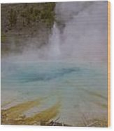 Superior Geyser 1 Wood Print