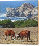 Surf And Turf Two Wood Print by Jeff Lowe