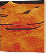 Surface Of Venus Wood Print
