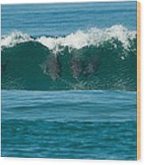 Surfing Dolphins 2 Wood Print
