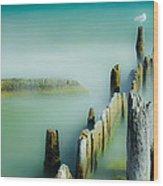 Surreal Sea Gull Wood Print