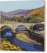 Sutherland Scotland Wood Print