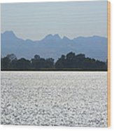 Sutter Buttes And Flooded Rice Field Wood Print