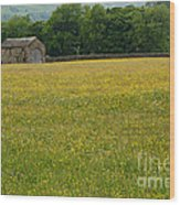 Swaledale Buttercup Meadow Wood Print