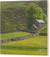 Swaledale Wood Print