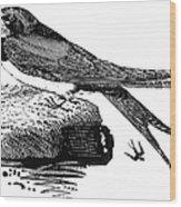 Swallow, C1800 Wood Print