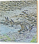 Swallows At The River Wood Print