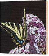 Swallowtail On Lilac 3 Wood Print
