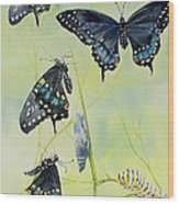 Swallowtail Story Wood Print