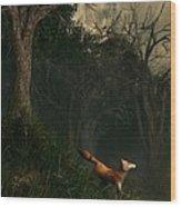 Swamp Fox Wood Print