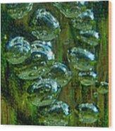 Swamp Gas Wood Print