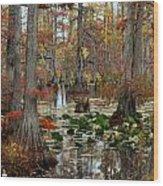 Swamp In Fall Wood Print