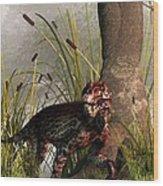 Swamp Lycaenops Wood Print