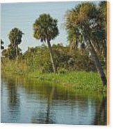 Swamp Reflections Wood Print