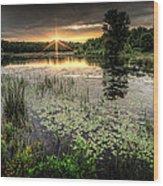 Swamp Sunrise Wood Print