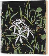 Swamplilies Wood Print