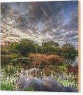 Swampy Wood Print