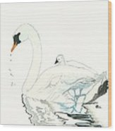 Swan And Her Baby Wood Print