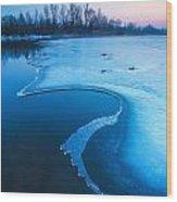 Swan Wood Print by Davorin Mance